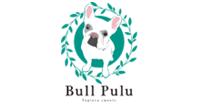 BULL PULU TAPIOKA(コンサルタント)